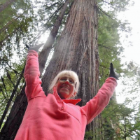 teresa-and-the-tree-cropped